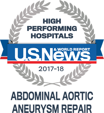 Central DuPage and Northwestern Memorial Hospital U.S. News & World Report High Performing Hospitals Aneurysm 2017-2018 graphic.