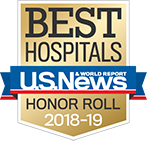 Northwestern Memorial Hospital U.S. News & World Report Best Hospitals Honor Roll 2018-2019 graphic.