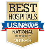 Northwestern Memorial Hospital U.S. News & World Report Best Hospitals Pulmonology 2018-2019 graphic.