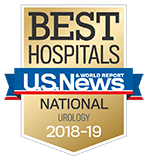 Northwestern Memorial Hospital U.S. News & World Report Best Hospitals Urology 2018-2019 graphic.