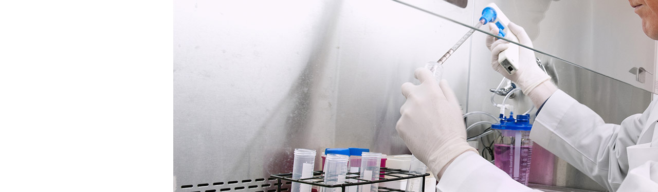 Scientist preforming immunotherapy tests
