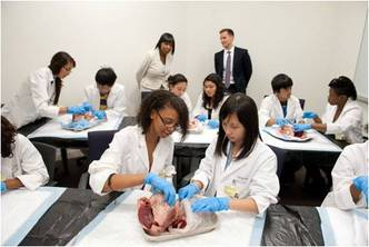 Summer High School students focused on Cardiology
