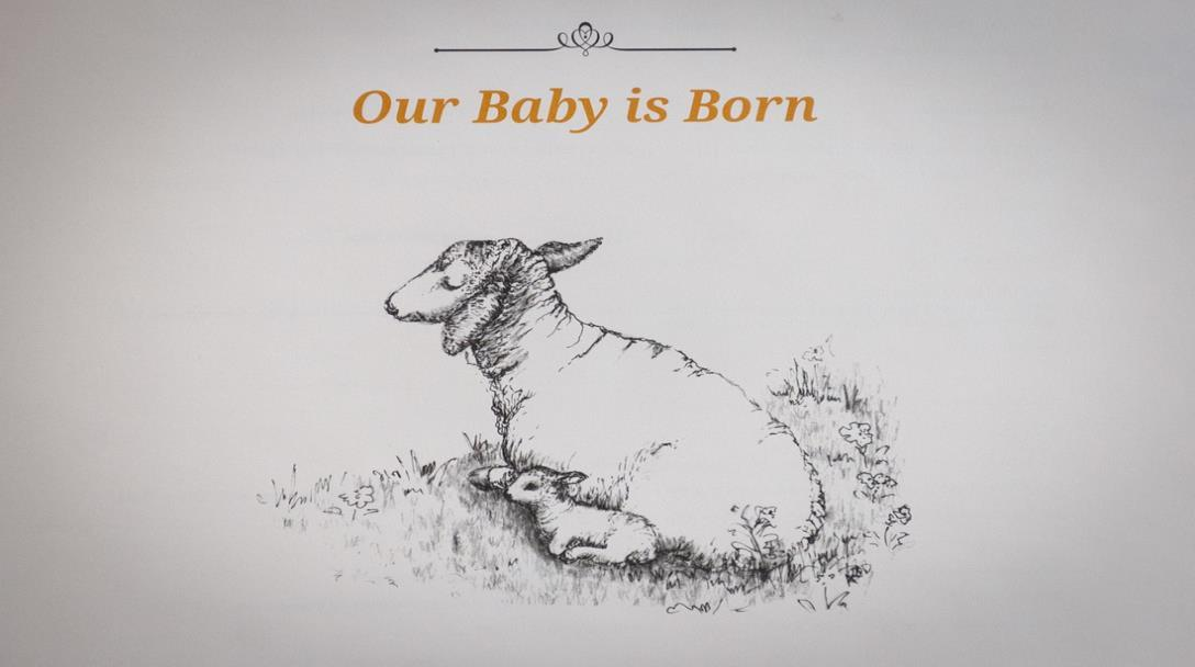Our baby is born book publication