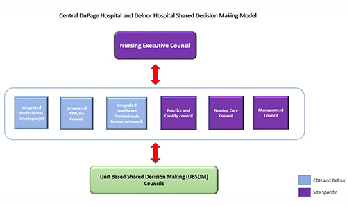 Northwestern Medicine Central DuPage Hospital and Delnor Hospital Nursing Shared Decision Making Model
