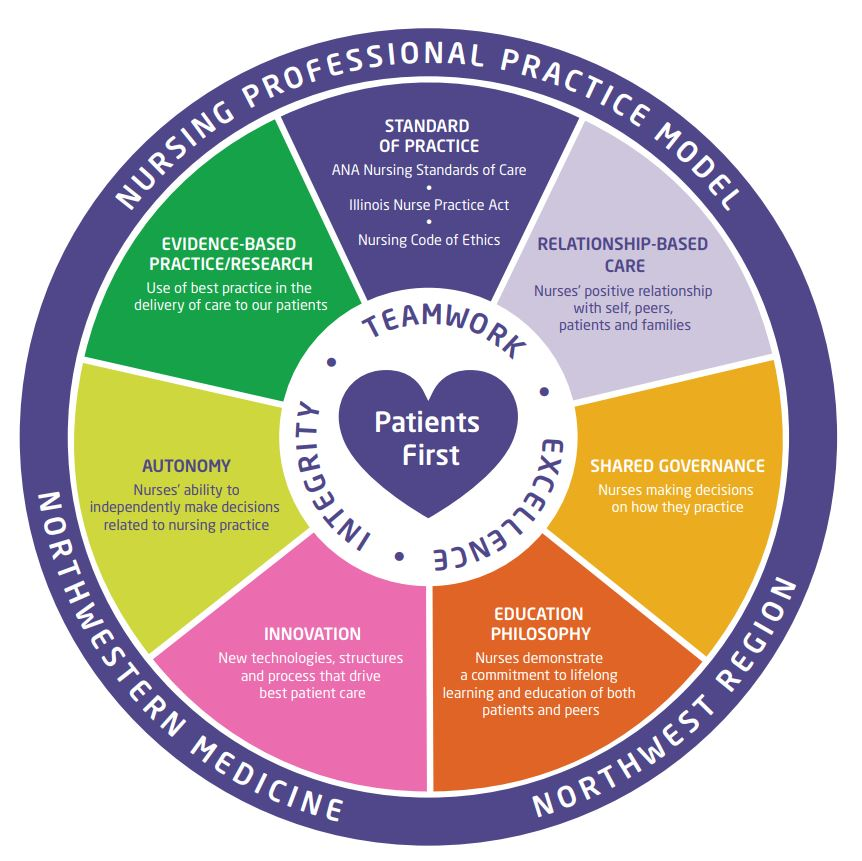 Diagram of nursing professional practice model, which focuses on integrity, teamwork, and excellence.