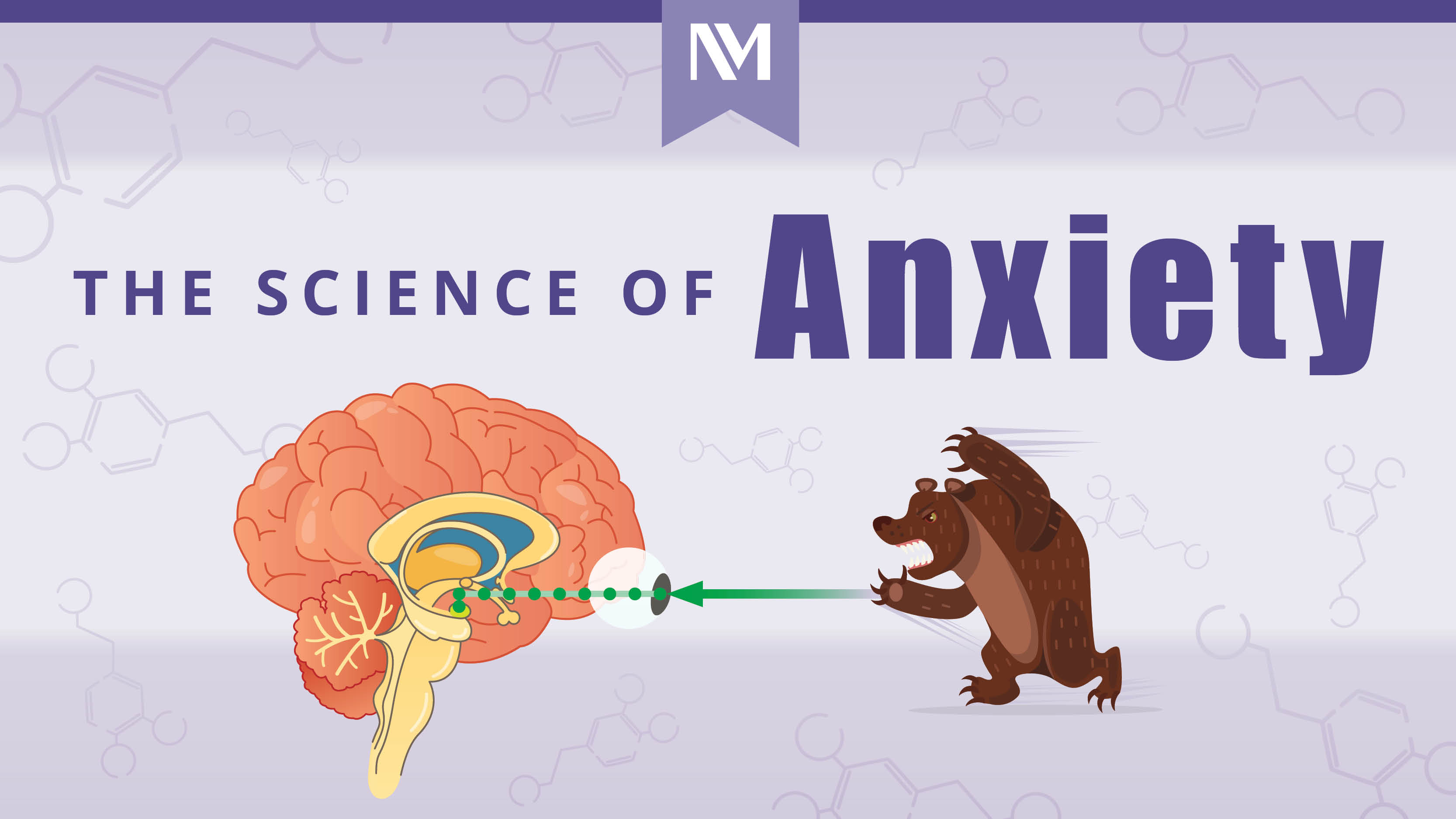 nm-science-of-anxiety__preview_release