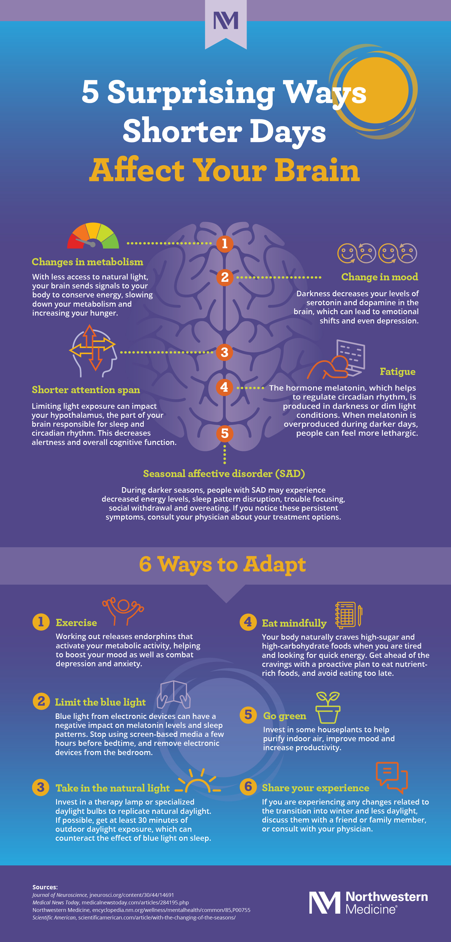 Infographic about how shorter days affect our brain